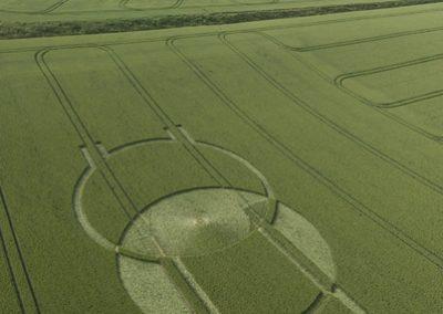 Horton, Wiltshire | 24th June 2008 | Wheat L