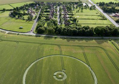 Burderop, Wiltshire | 9th July 2008 | Barley L2