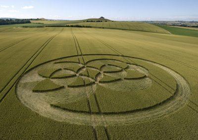 East Field Alton Barnes, Wiltshire | 9th July 2008 | Wheat L