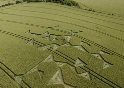 Charlbury Hill, Oxfordshire | 14th July 2008 | Wheat L