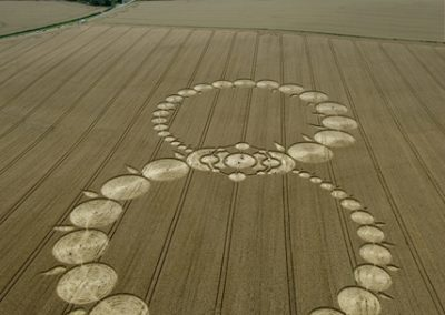 Milk Hill, Wiltshire | 8th August 2008 | Wheat L
