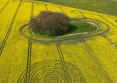 The Ridgeway, Wiltshire | 14th April 2009 | Oilseed Rape L3
