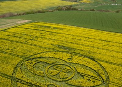 West Kennett Long Barrow, Wiltshire | 19th April 2009 | Oilseed Rape L