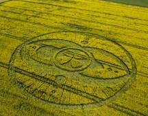 West Kennett Long Barrow, Wiltshire   19th April 2009   Oilseed Rape L