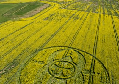 West Kennett Long Barrow, Wiltshire | 19th April 2009 | Oilseed Rape L2