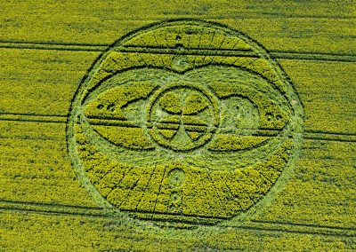 West Kennett Long Barrow, Wiltshire | 19th April 2009 | Oilseed Rape OH
