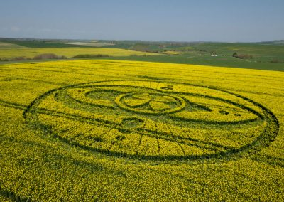 West Kennett Long Barrow, Wiltshire | 19th April 2009 | Oilseed Rape LOW