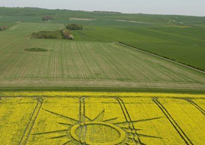 Avebury Rutlands Farm, Wiltshire   23rd April 2009   Oilseed Rape L3