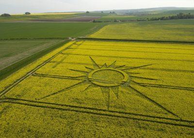 Avebury Rutlands Farm, Wiltshire   23rd April 2009   Oilseed Rape L
