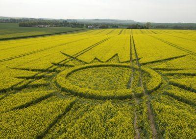 Avebury Rutlands Farm, Wiltshire   23rd April 2009   Oilseed Rape LOW2