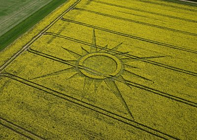 Avebury Rutlands Farm, Wiltshire | 23rd April 2009 | Oilseed Rape OH2