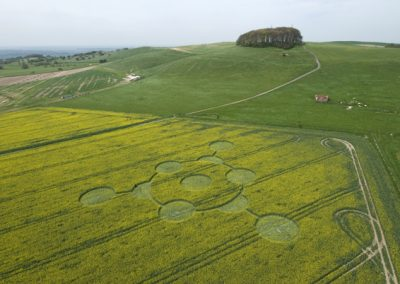 Morgans Hill, Wiltshire | 24th April 2009 | Oilseed Rape L2
