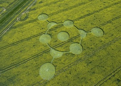 Morgans Hill, Wiltshire | 24th April 2009 | Oilseed Rape OH2