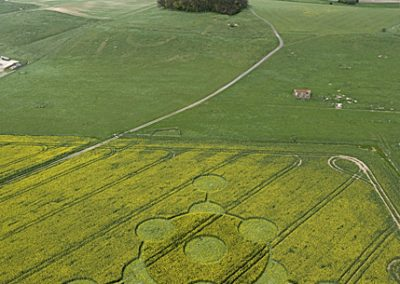 Morgans Hill, Wiltshire | 24th April 2009 | Oilseed Rape L3