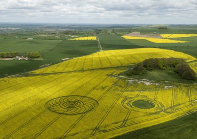 Roundway Hill, Wiltshire | 29th April 2009 | Oilseed Rape L4