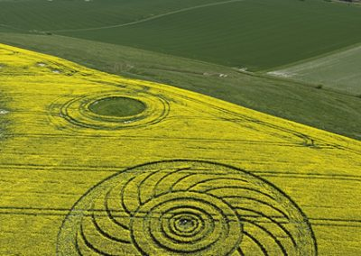 Roundway Hill, Wiltshire | 29th April 2009 | Oilseed Rape L2