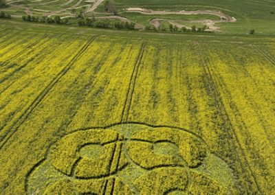 East Kennett Long Barrow, Wiltshire | 3rd May 2009 | Oilseed Rape L