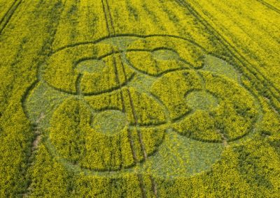 East Kennett Long Barrow, Wiltshire | 3rd May 2009 | Oilseed Rape LOW