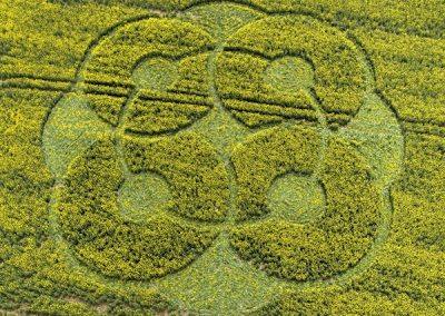 East Kennett Long Barrow, Wiltshire | 3rd May 2009 | Oilseed Rape OH
