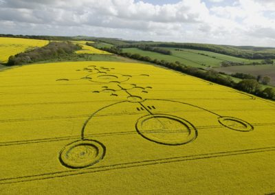 Clatford, Wiltshire | 4th May 2009 | Oilseed Rape L3