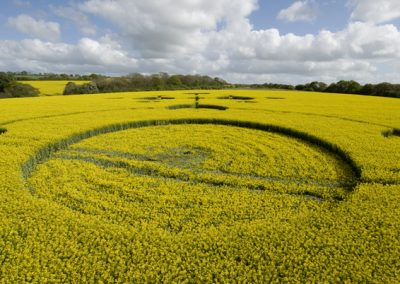 Clatford, Wiltshire | 4th May 2009 | Oilseed Rape LOW5