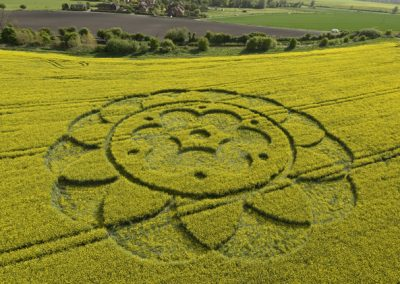 All Cannings Bridge, Wiltshire | 6th May 2009 | Oilseed Rape L