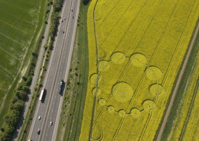 Peaks Down, Wiltshire   9th May 2009   Oilseed Rape OH2