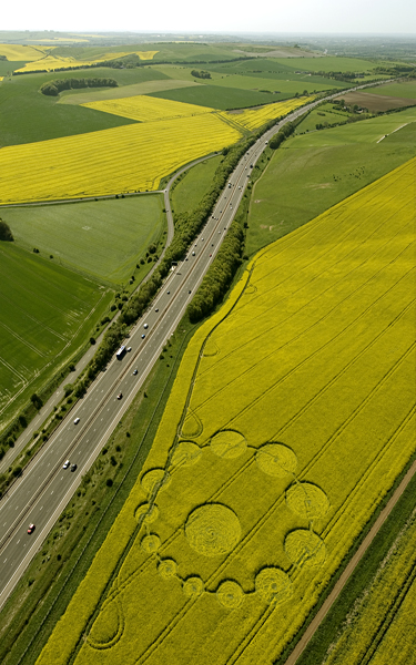 Peaks Down, Wiltshire | 9th May 2009 | Oilseed Rape L