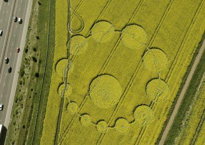 Peaks Down, Wiltshire   9th May 2009   Oilseed Rape OH