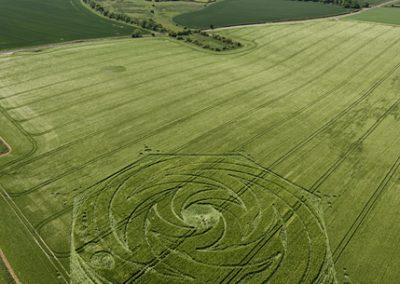 Milk Hill, Wiltshire   2nd June 2009   Barley L2