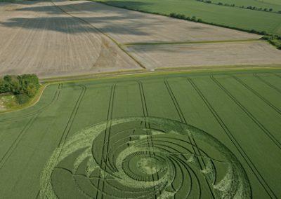 South Field Alton Priors, Wiltshire   13th June 2009   Wheat L