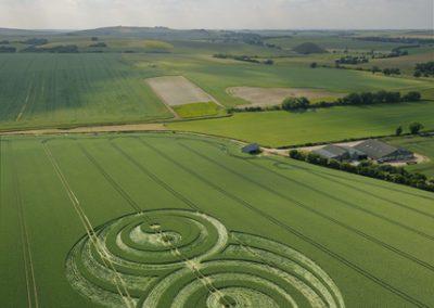 East Kennett, Wiltshire   21st June 2009   Wheat L3