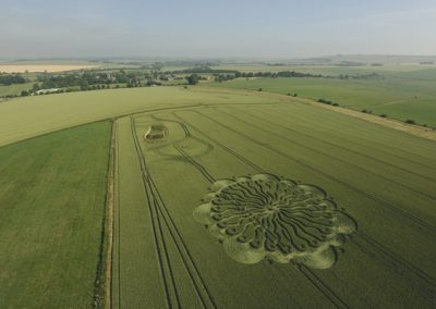 Waden Hill Avebury, Wiltshire   1st July 2009   Wheat L3