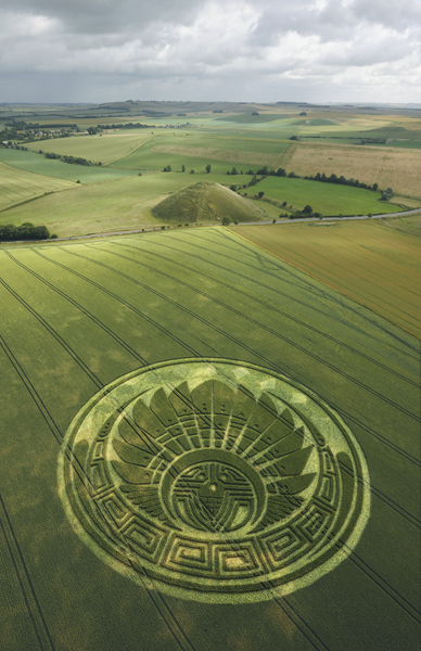 Silbury Hill, Wiltshire | 5th July 2009 | Wheat L2