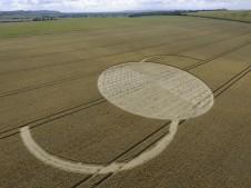 East Field Alton Barnes, Wiltshire   14th July 2009   Wheat LOW