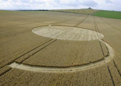 East Field Alton Barnes, Wiltshire   14th July 2009   Wheat LOW2