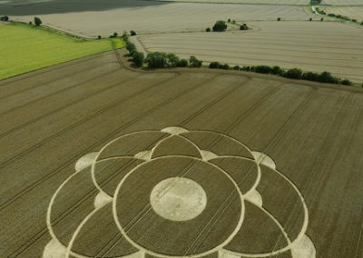 Winterbourne Bassett, Wiltshire   31st July 2009   Wheat L3