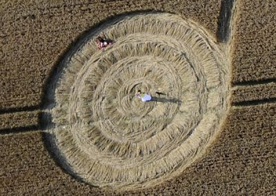 West Overton, Wiltshire | 9th August 2009 | Wheat CL3