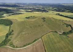 Cley Hill Warminster, Wiltshire   9th July 2010   L4