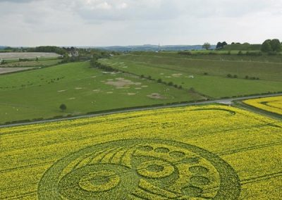 Old Sarum near Salisbury, Wiltshire | 5th May 2010 | Oilseed Rape L2