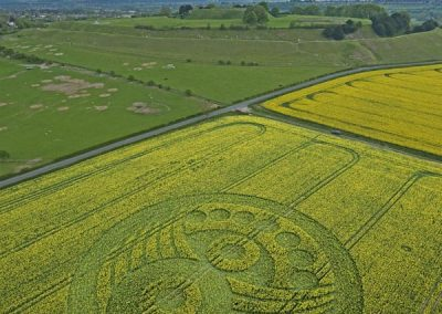 Old Sarum near Salisbury, Wiltshire | 5th May 2010 | Oilseed Rape L