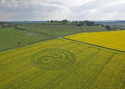 Old Sarum near Salisbury, Wiltshire | 5th May 2010 | Oilseed Rape L3