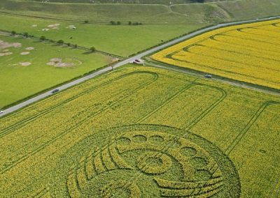Old Sarum near Salisbury, Wiltshire | 5th May 2010 | Oilseed Rape L4