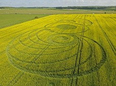 Stonehenge, Wiltshire | 9th May 2010 | Oilseed Rape LOW
