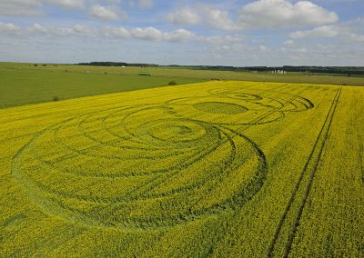 Stonehenge, Wiltshire | 9th May 2010 | Oilseed Rape  LOW2