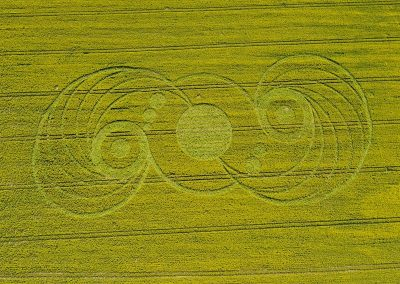 Stonehenge, Wiltshire | 9th May 2010 | Oilseed Rape OH