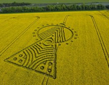 Yarnbury Castle Hillfort, Wiltshire | 16th May 2010 | Oilseed Rape L
