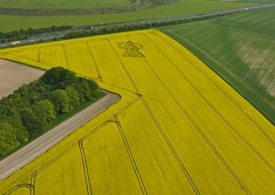 Yarnbury Castle Hillfort, Wiltshire | 16th May 2010 | Oilseed Rape BO