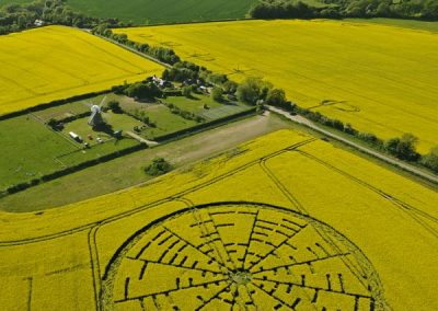 Wilton Windmill, Wiltshire | 22nd May 2010 | Oilseed Rape L2