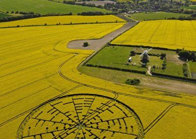 Wilton Windmill, Wiltshire | 22nd May 2010 | Oilseed Rape L3